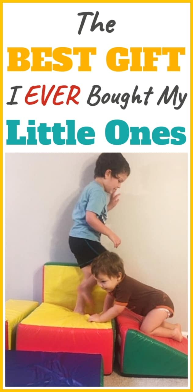 The BEST Gift for Toddlers & Siblings age 2-4