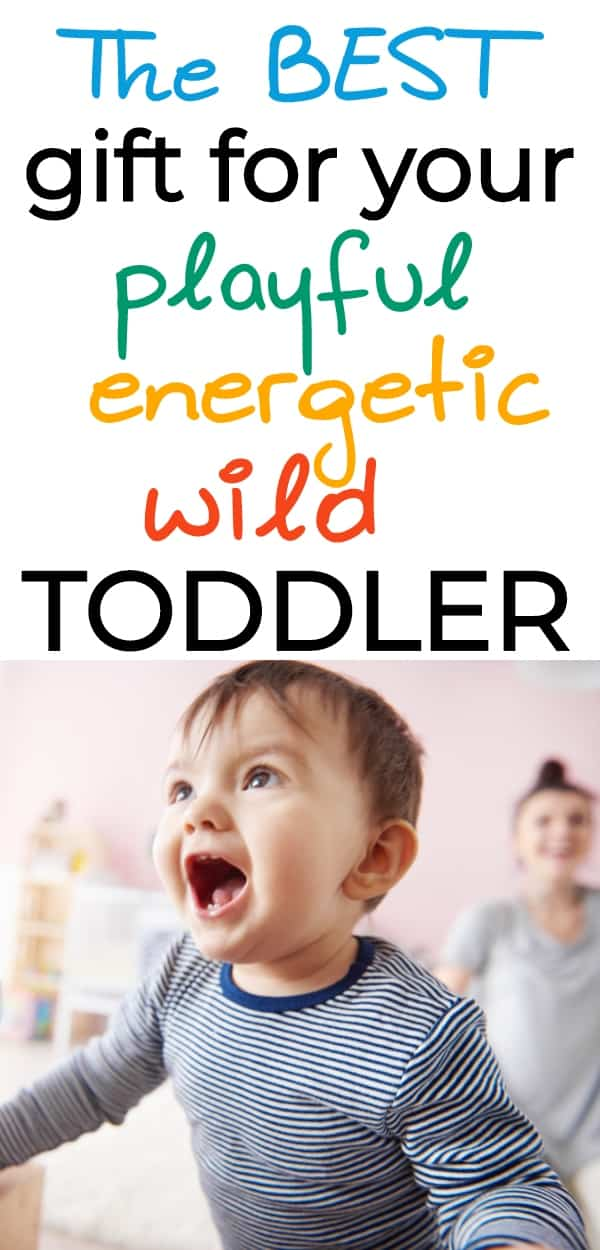 Awesome gift idea for toddlers, babies, and beyond