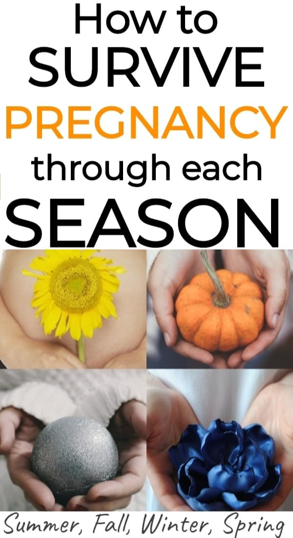 Pregnancy Survival Guide: All 4 Seasons